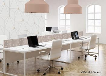 DDS105_Sixgon_Rose office wall paper perth