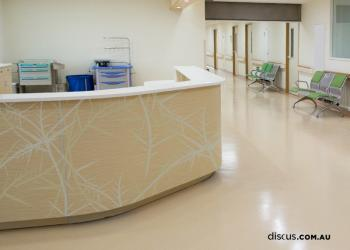 DDS187_venation_Florence_2_hospital graphics fitout