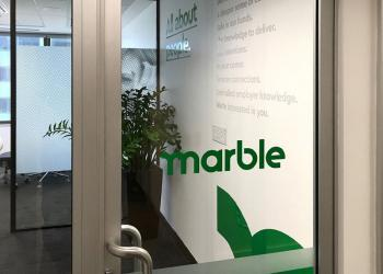 marble-vinyl-cut-1