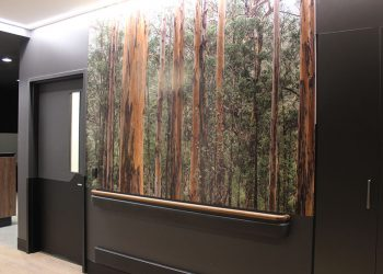 hospital wall graphics decal perth